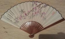 Sheng Fan front